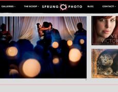 Sprung Photo – Website